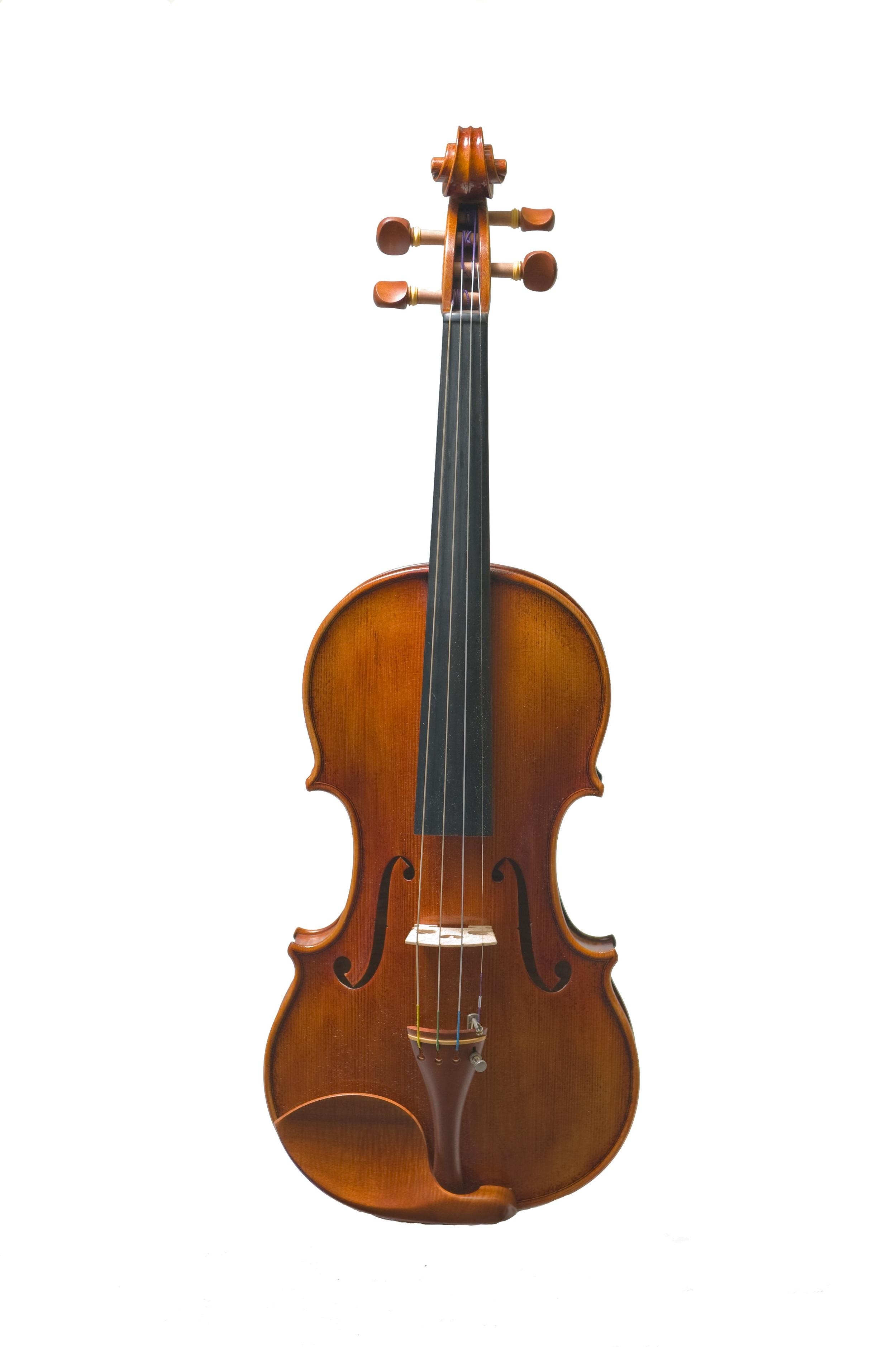 GMS Principal Violin front.jpg