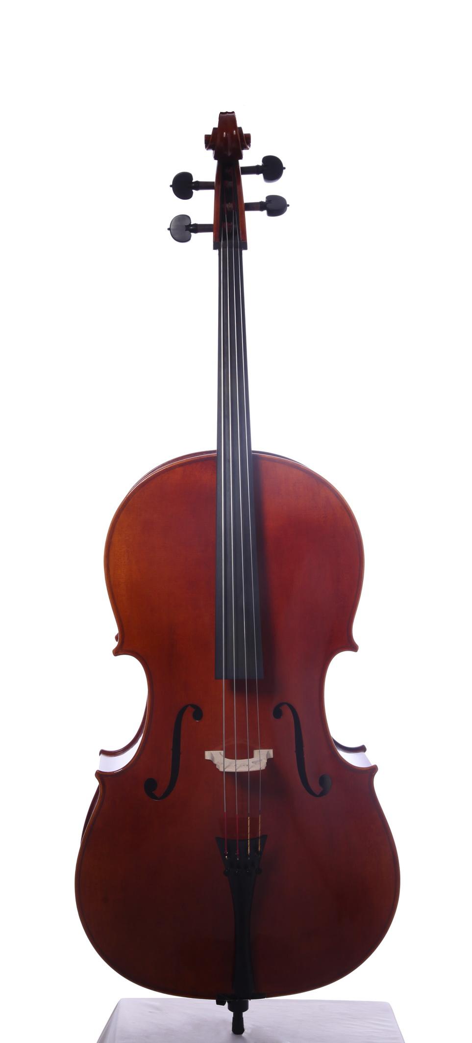 新品油性大提琴面frontresize.jpg