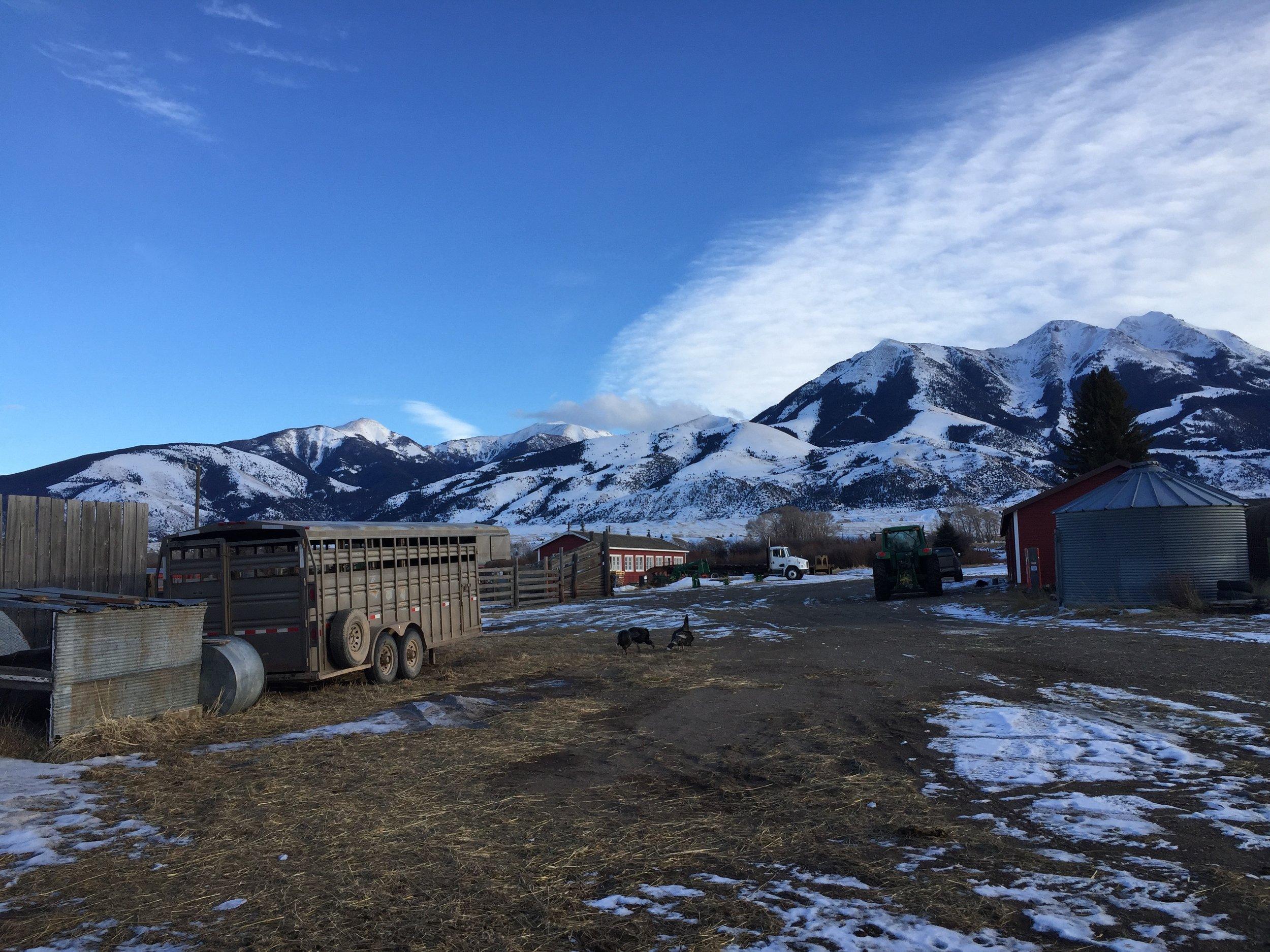 Druska's ranch