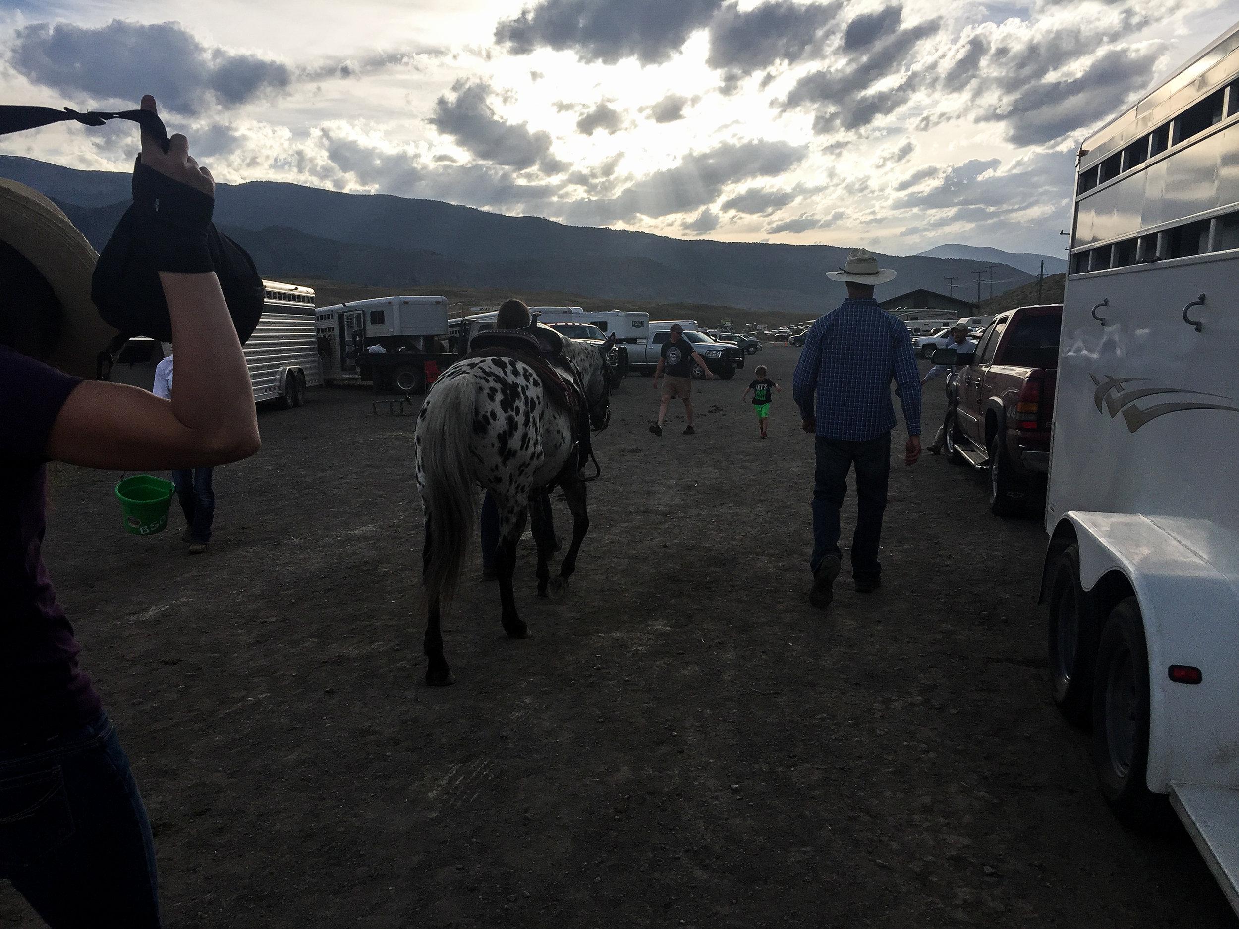 Gardiner rodeo