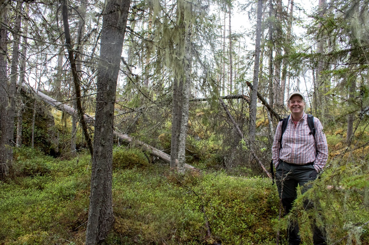Lars Östlund, a forest historian at the Swedish University of Agricultural Sciences, finds clues about the past in the forest itself.