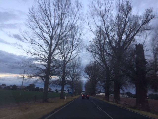 - On the road again! It's so lovely driving with no traffic (except that one car). Sure is a change from Sydney roads!