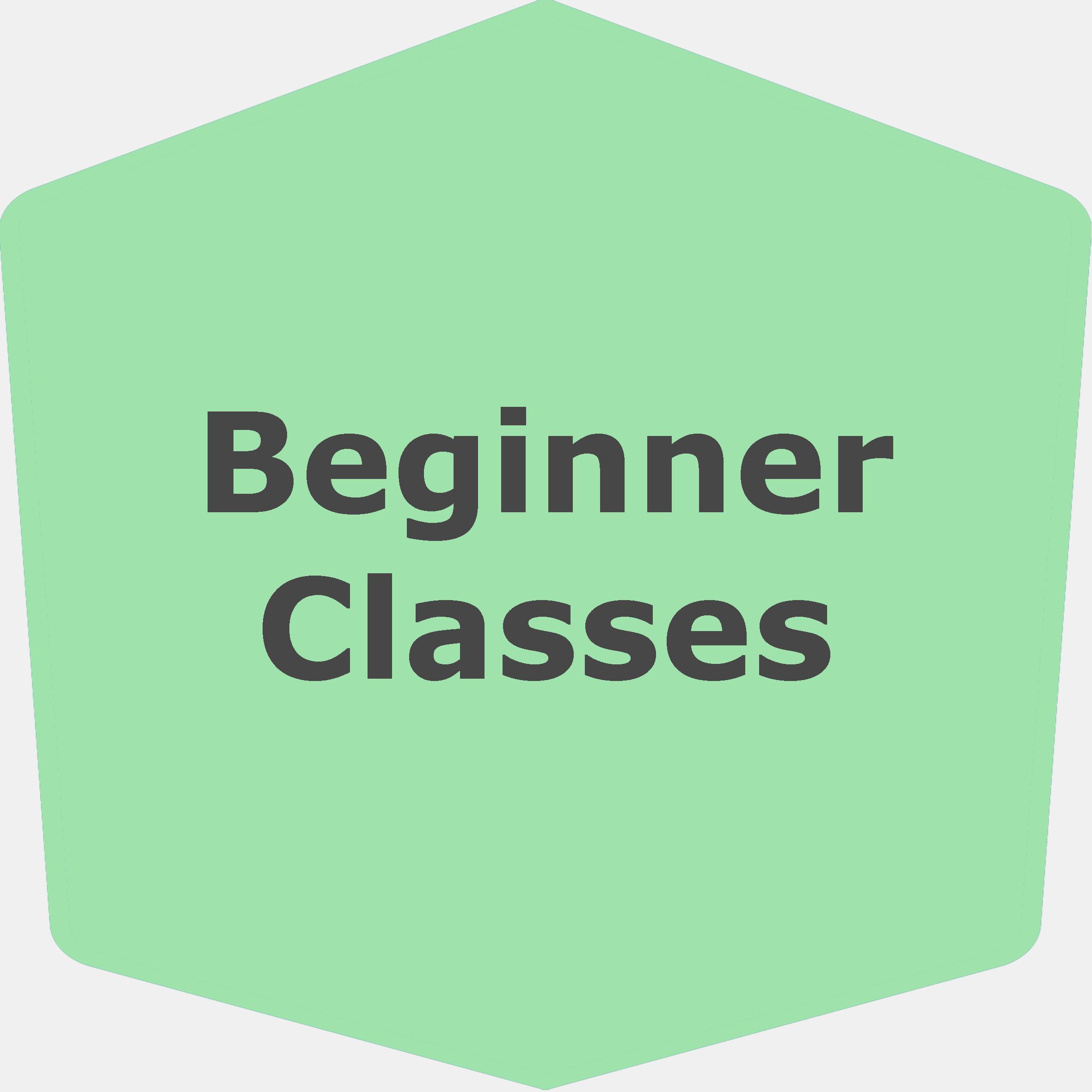 Beginner Classes (Icon).jpg