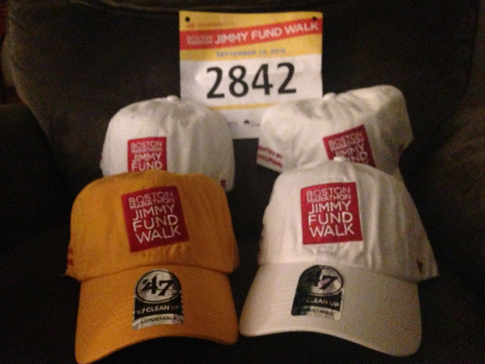 Team hats! Mine is the gold because cancer makes me special :-D
