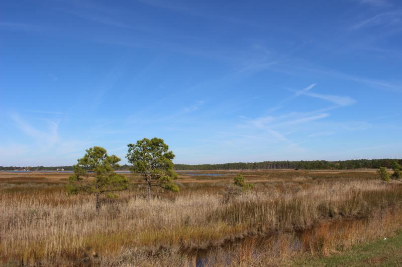 Marshland near Parson's Creek, one of the places Harriet Tubman would have been familiar with in Maryland's Eastern Shore, and which visitors to the new Harriet Tubman Underground Railroad National Historical Park can visit. (Photo courtesy of the National Park Service)