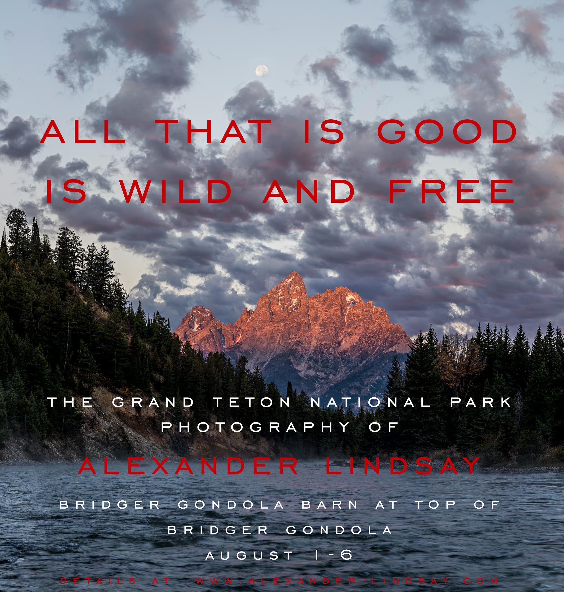 Gondola Show Poster - Wyoming 2019.jpg