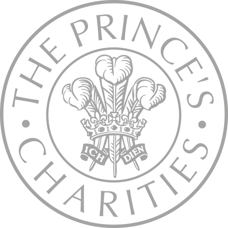 The Princes Trust Charities