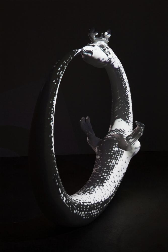 Ouroboros II Projektion