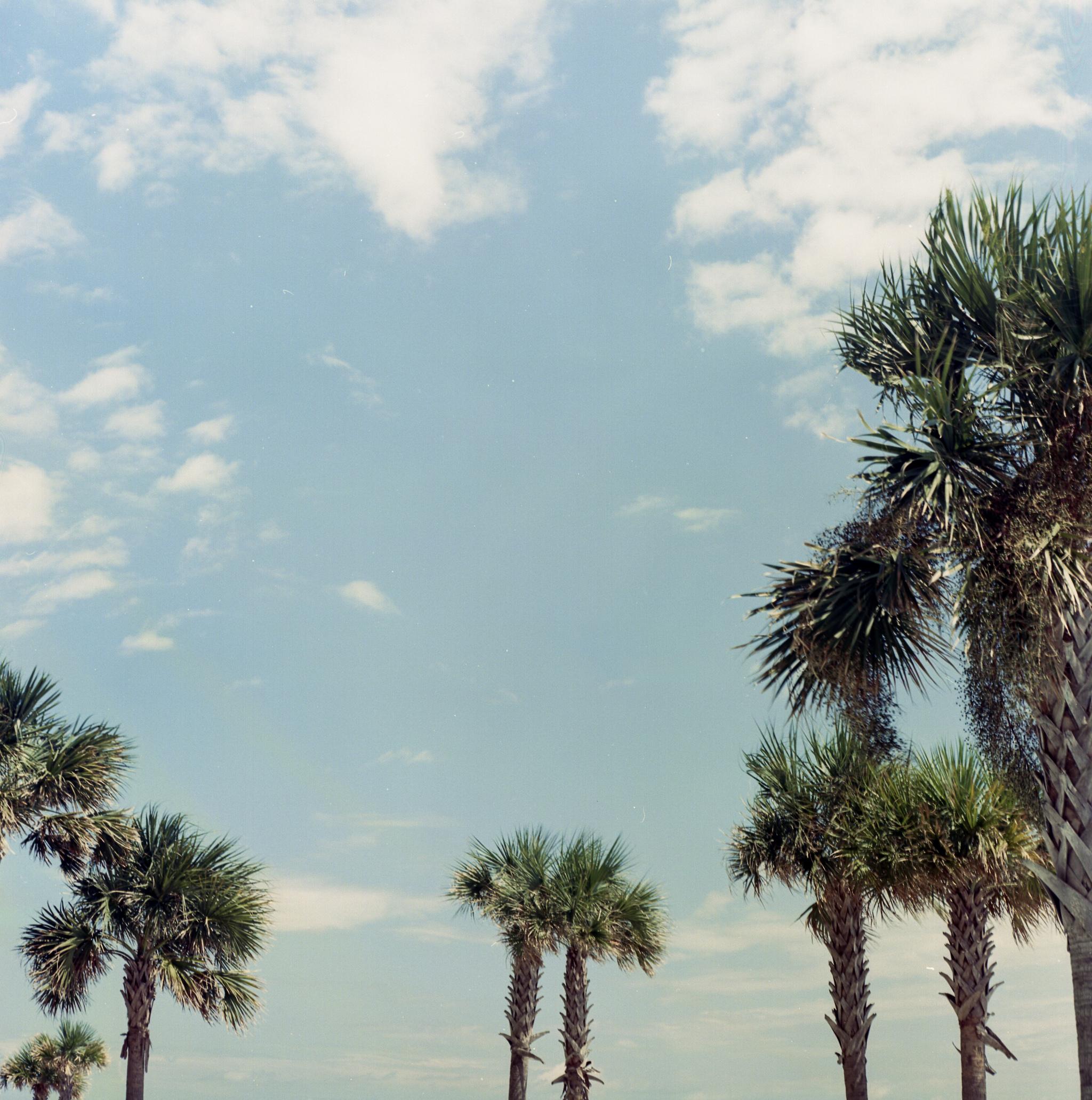 film-photography-kodak-ektar-100-film-color-film-orange-beach-alabama-the-gulf