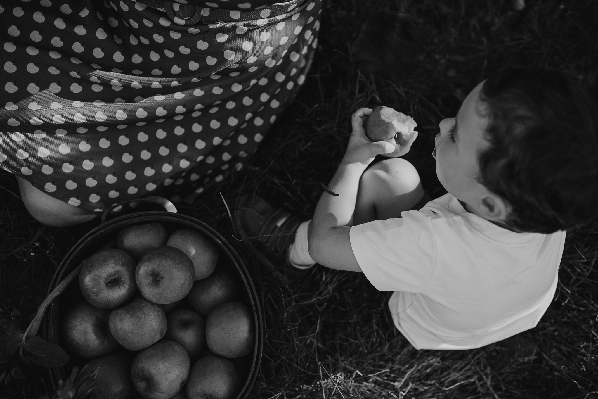 memphis-family-photographer-lifestyle-photoshoot-jones-orchard-apple-picking