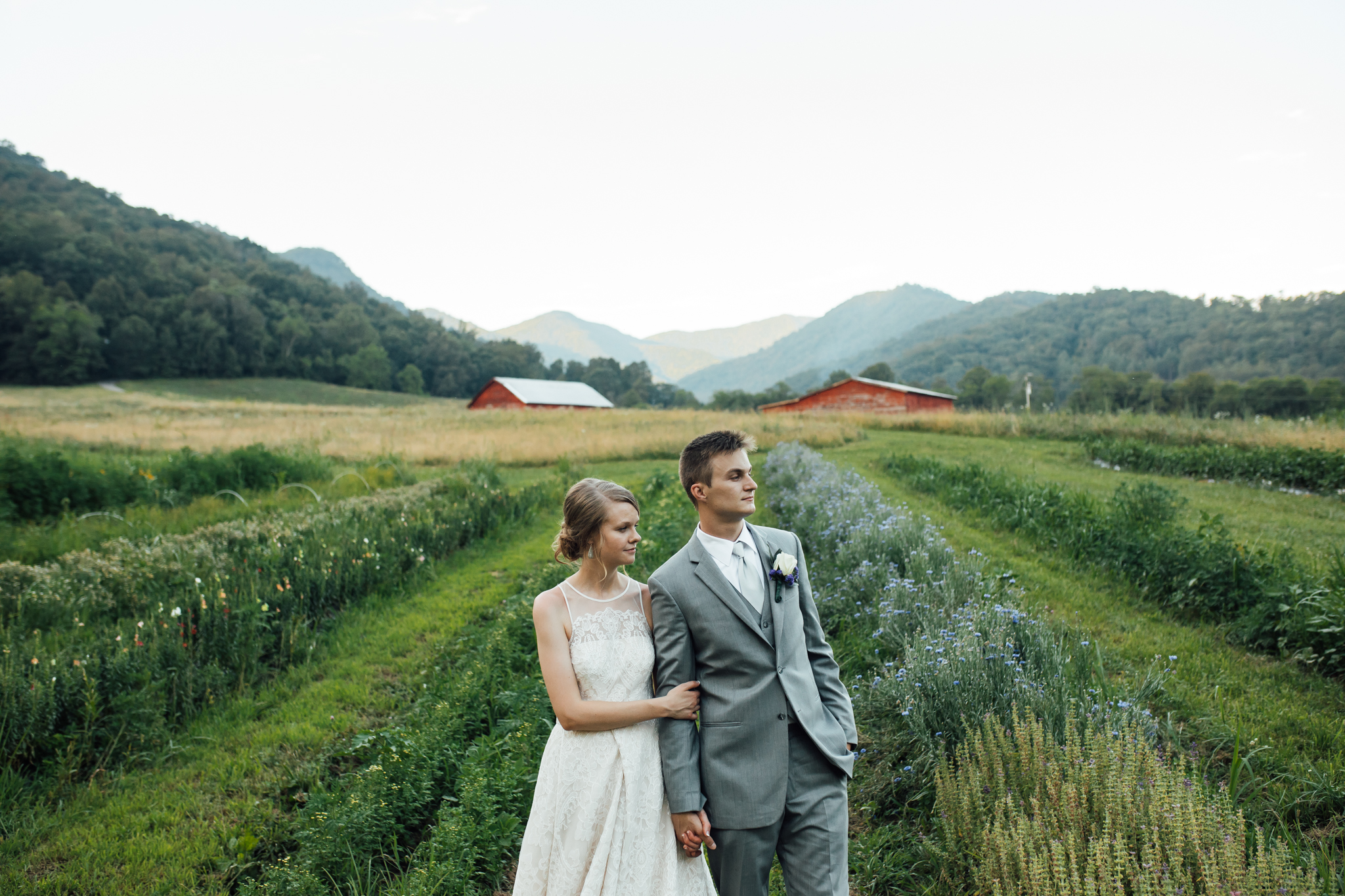 ashville-wedding-photographers-thewarmtharoundyou--backyard-asheville-wedding-mountain-wedding (189 of 244).jpg
