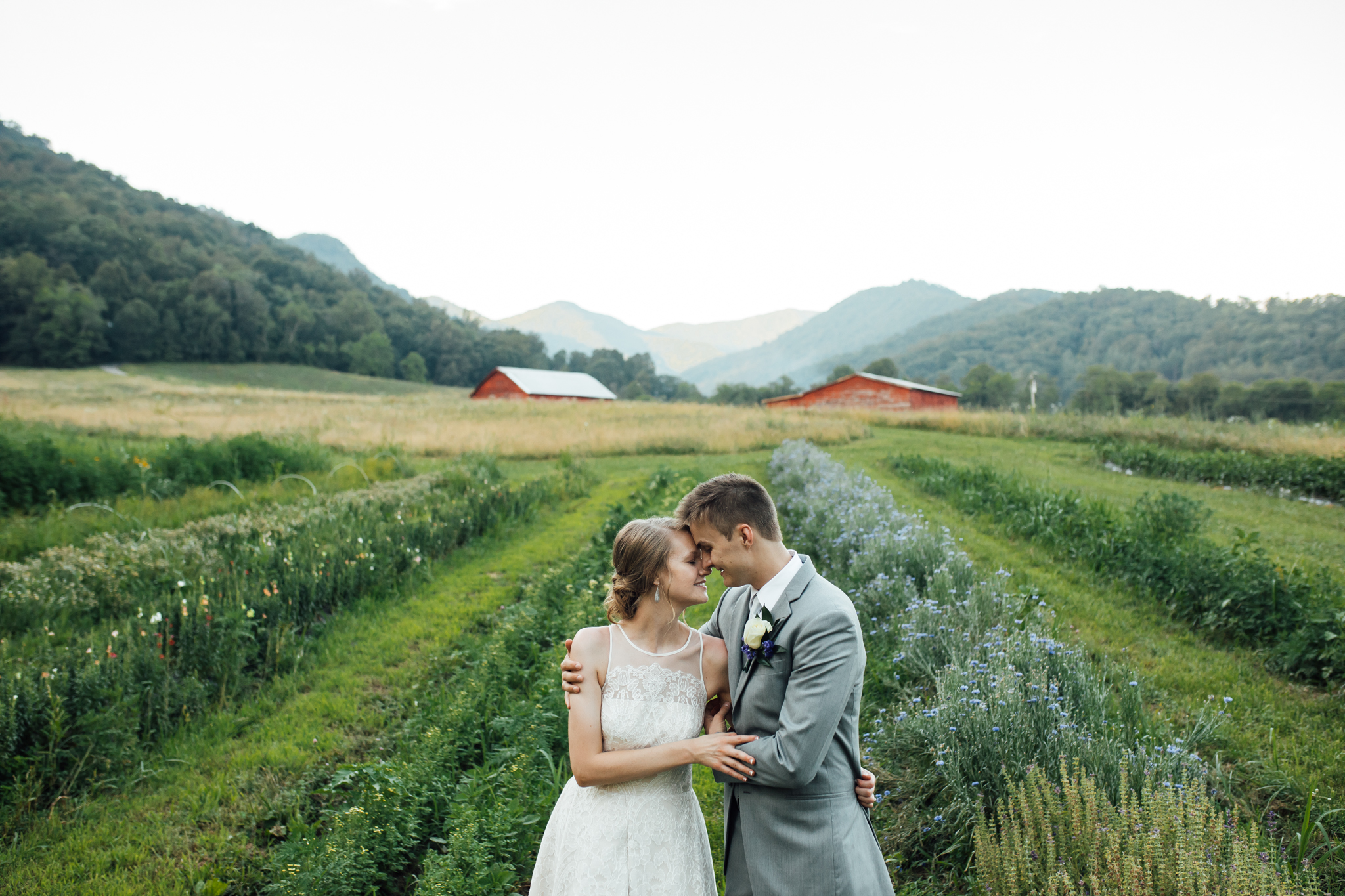 ashville-wedding-photographers-thewarmtharoundyou--backyard-asheville-wedding-mountain-wedding (196 of 244).jpg