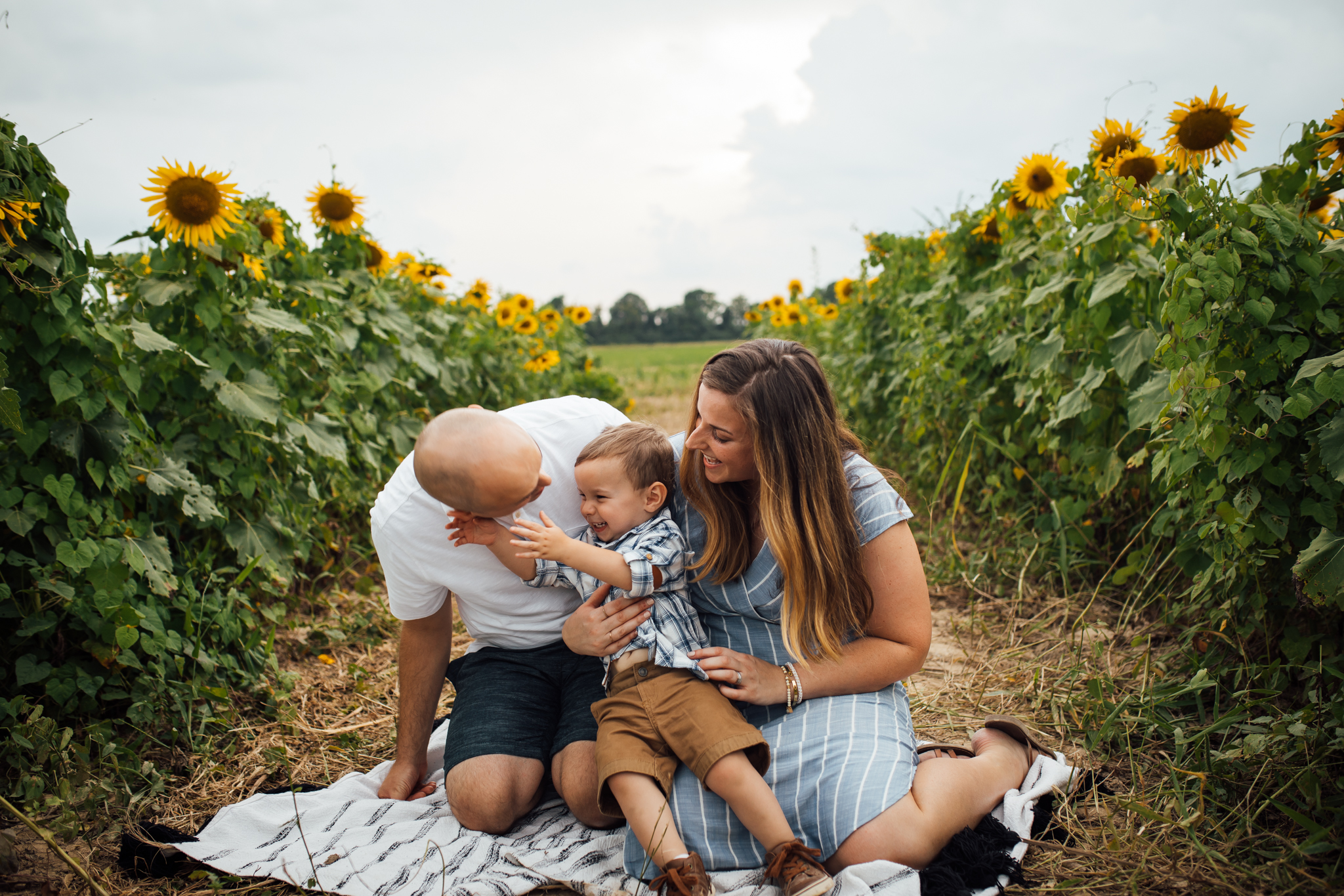 memphis-family-photographer-sunflower-thewarmtharoundyou (8 of 11).jpg