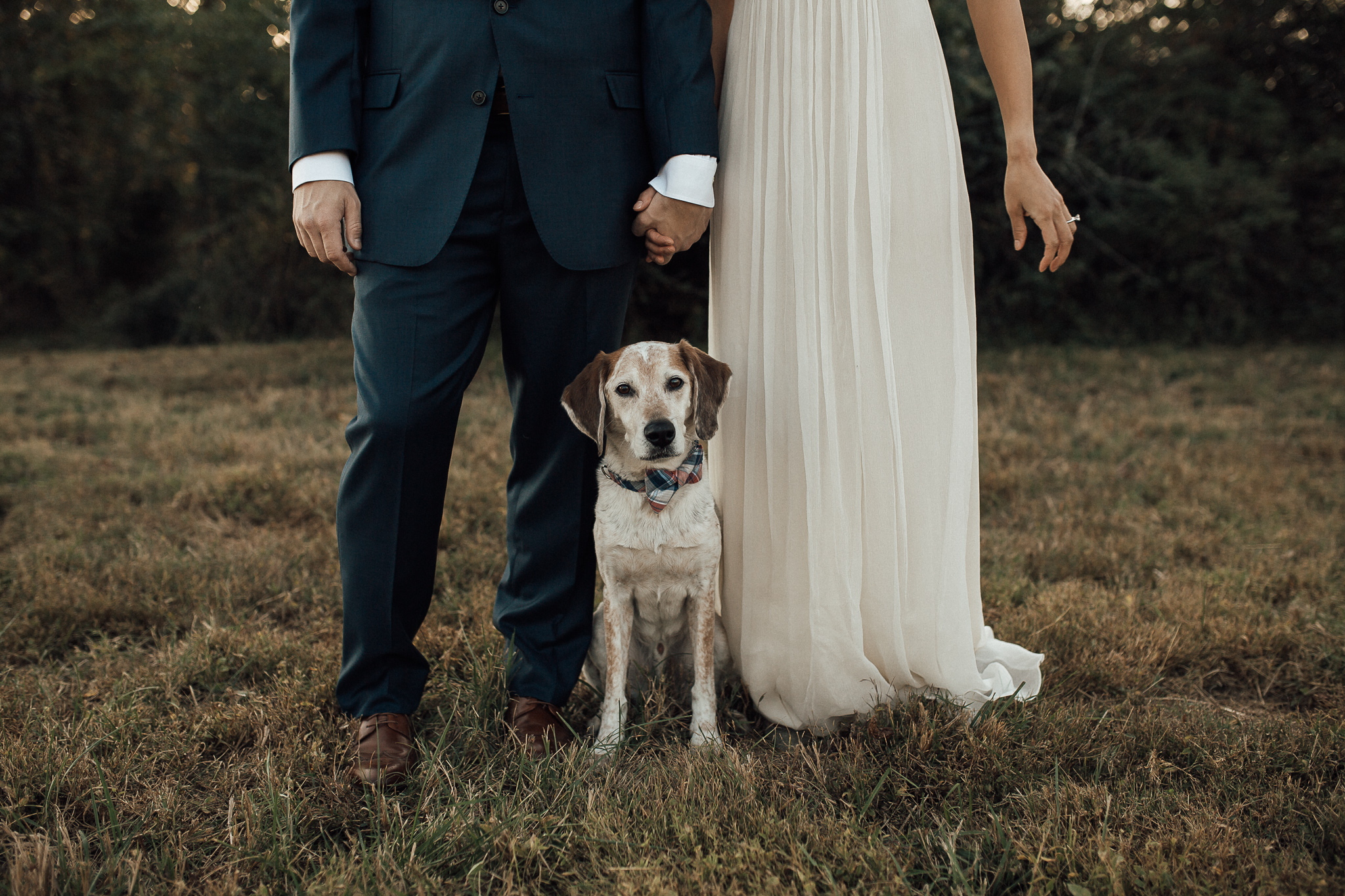 memphis-elopement-photographer-shelby-farms-shelby-farms-dog-park-cassie-cook-photography-27.jpg