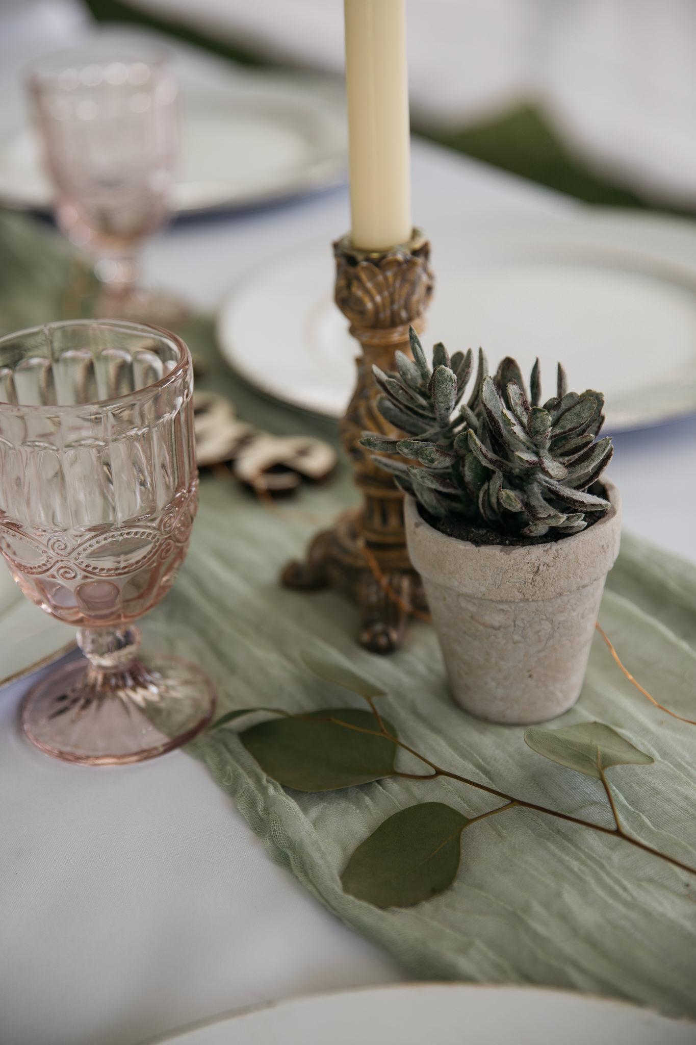 backyard-wedding-thewarmtharoundyou-lexy-branson-2-2.jpg