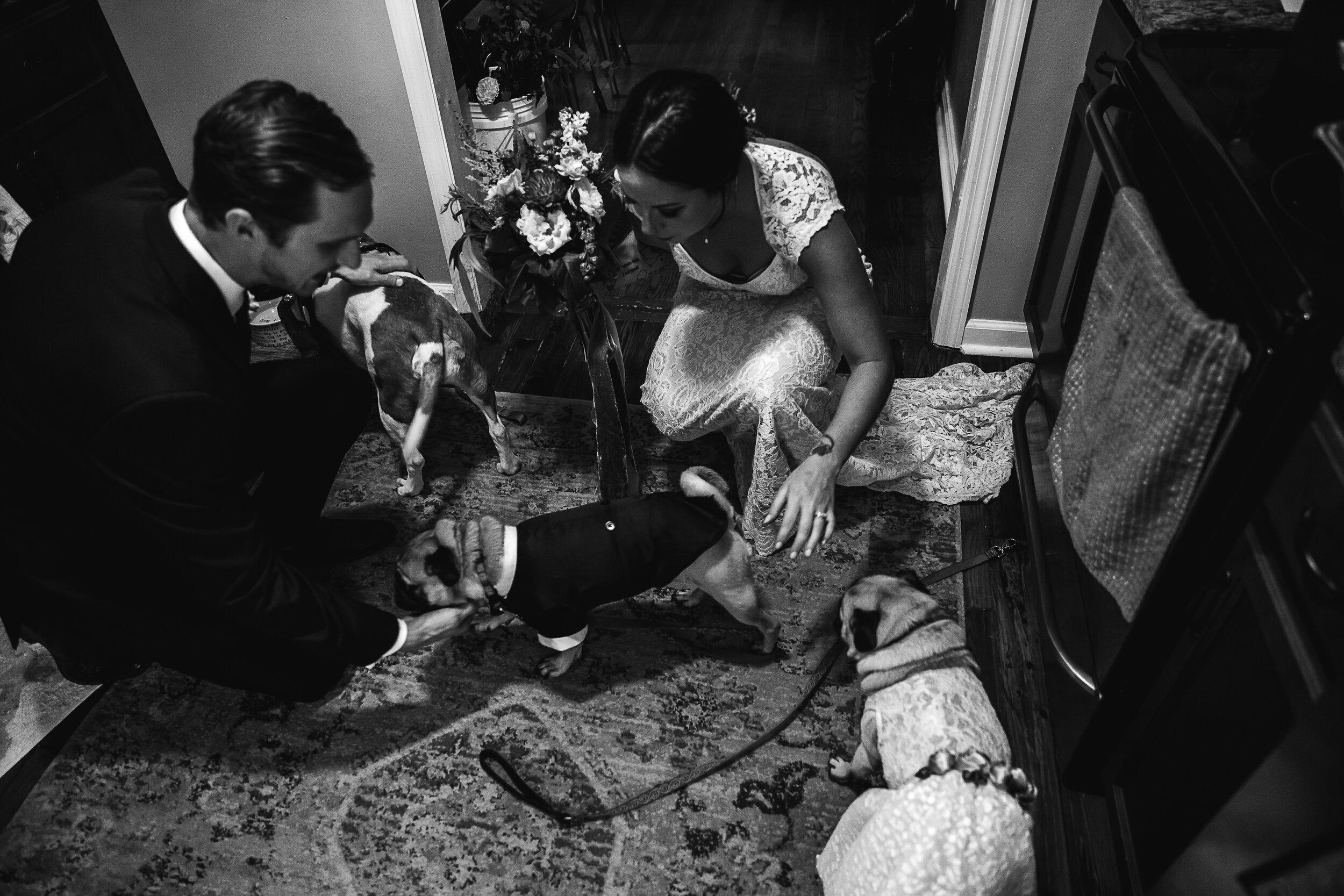Allison-and-Wesley-Memphis-Backyard-Wedding-TheWarmthAroundYou-50.jpg