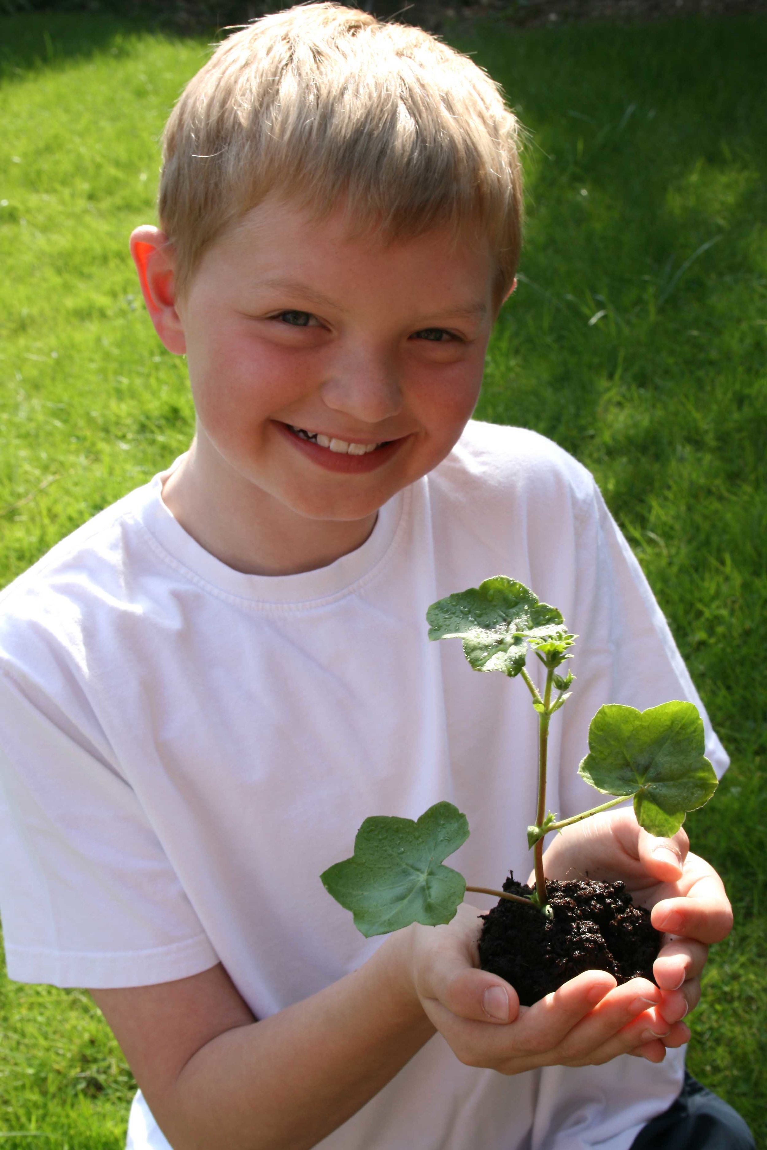 Growing food and caring for plants te