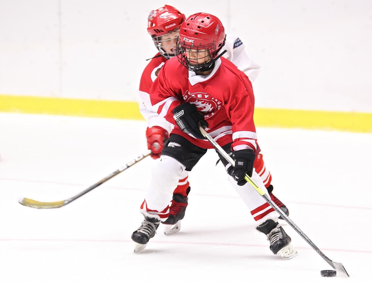 hockey-2274221_1280.jpg