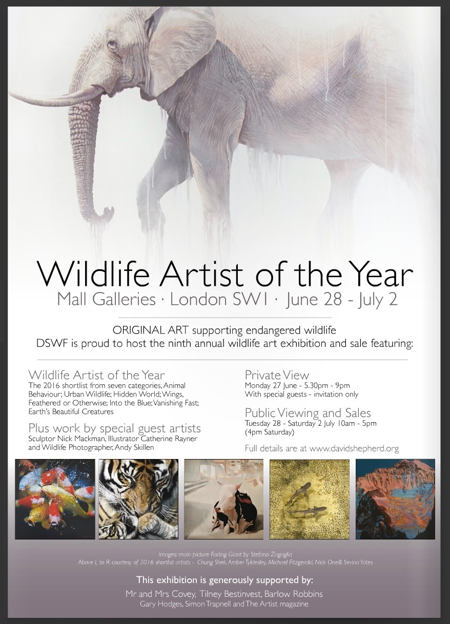 MICHAEL FITZGERALD 'BULL SLEEPS VARANASI BEACH' OIL PAINTING SHORTLISTED FOR WILDLIFE ARTIST OF THE YEAR JUNE 2016 (MIDDLE THUMBNAIL)