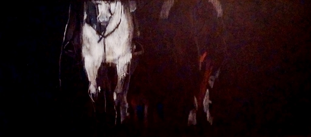 White Mare 120 x 50cm pencil on board....in progress 2017