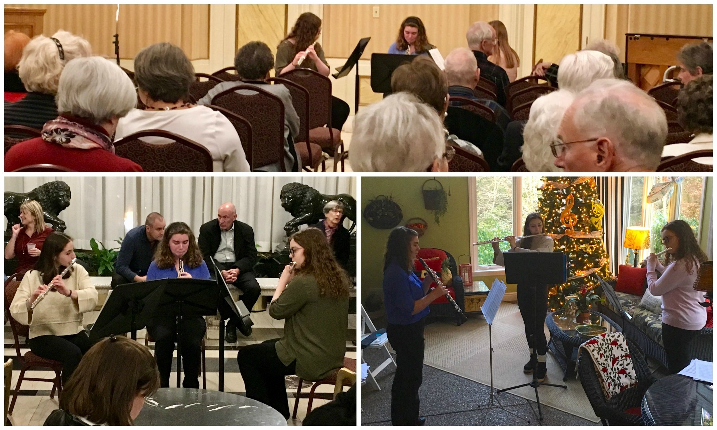 Kookaburra Quartet - November 14, 15, and 18, 2018Avery, Becky, Emily, and Zoe have performed as trios all around town in November 2018. They played for the Friends of the Pittsburgh Symphony in the Regency Room, in the beautiful Heinz Hall foyer before the Pittsburgh Speaker Series lecture by Gloria Steinem, and at the Pittsburgh Symphony Orchestra's Holiday Home Tour fundraising event.