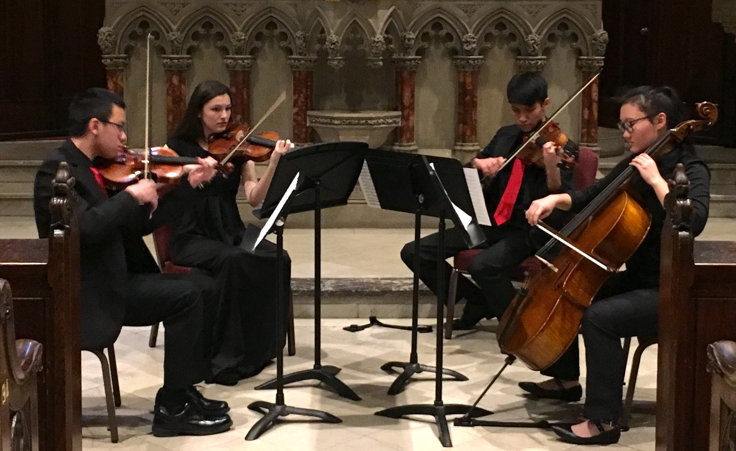 Copy of Vivo Quartet