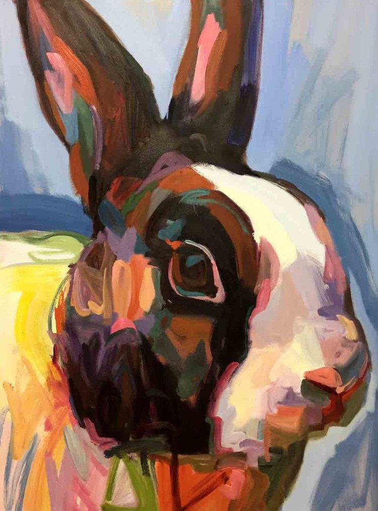 Rabbit12_DM.jpg