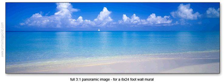 tropicalmural8x2a.jpeg