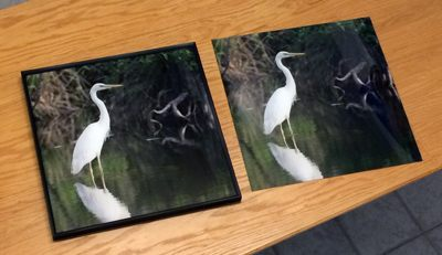 We find that our images printed directly onto acrylic panels have  a vivid and three dimensional look  just as photographic prints that are face mounted onto acrylic using an adhesive.