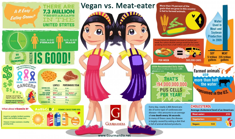 vegan-vs-meateater_51bc1afc01a03_w1500.jpg