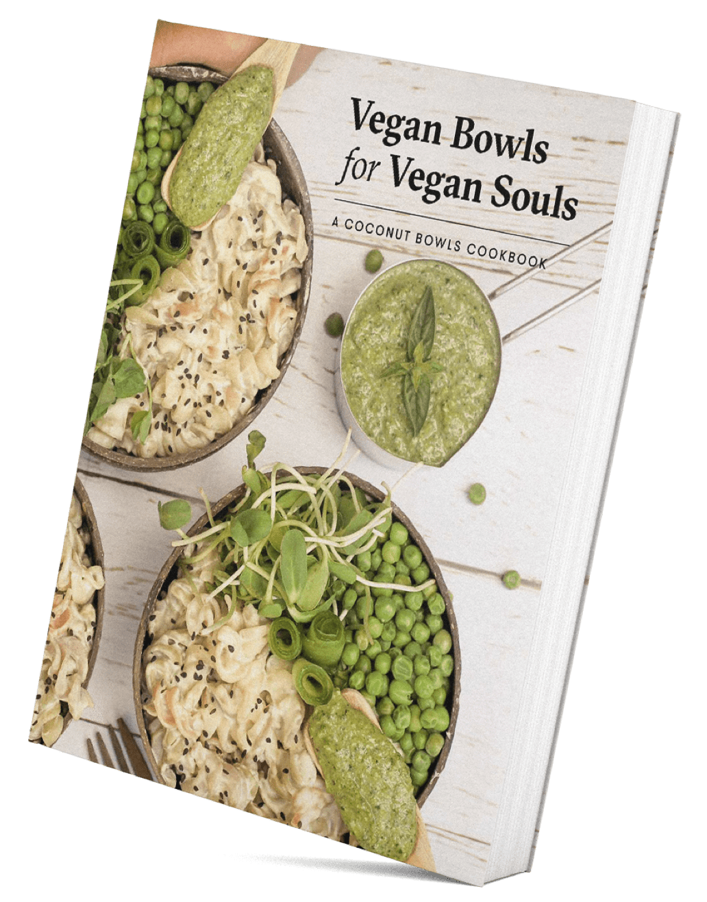 Vegan Bowls For Vegan Souls: 100 Recipes Book for which I've created a recipe along side many vegan foodies!  use 'amelie10' for a discount !  (works both on book and ebook)