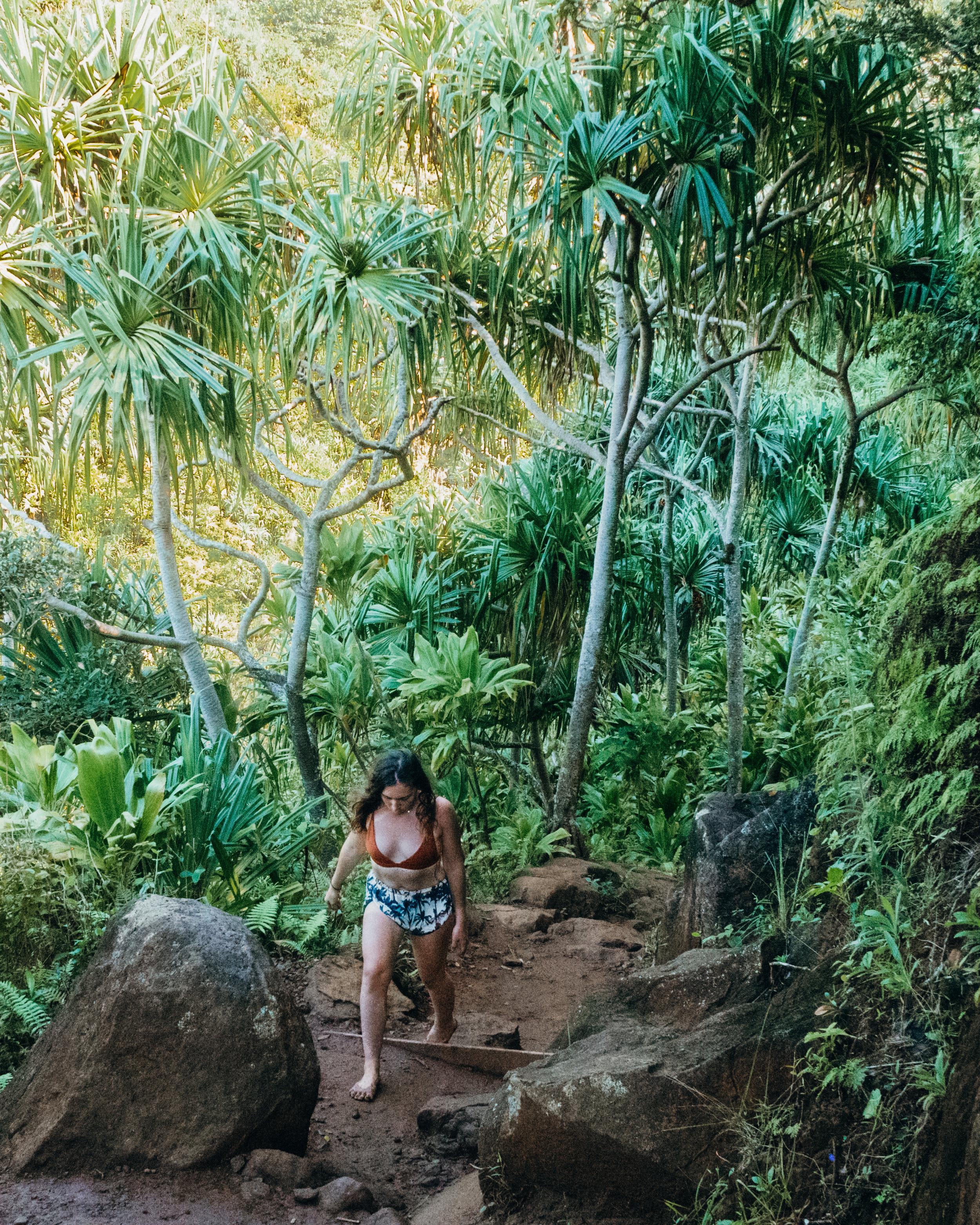 hawaii Kauai- amelietahiti.com