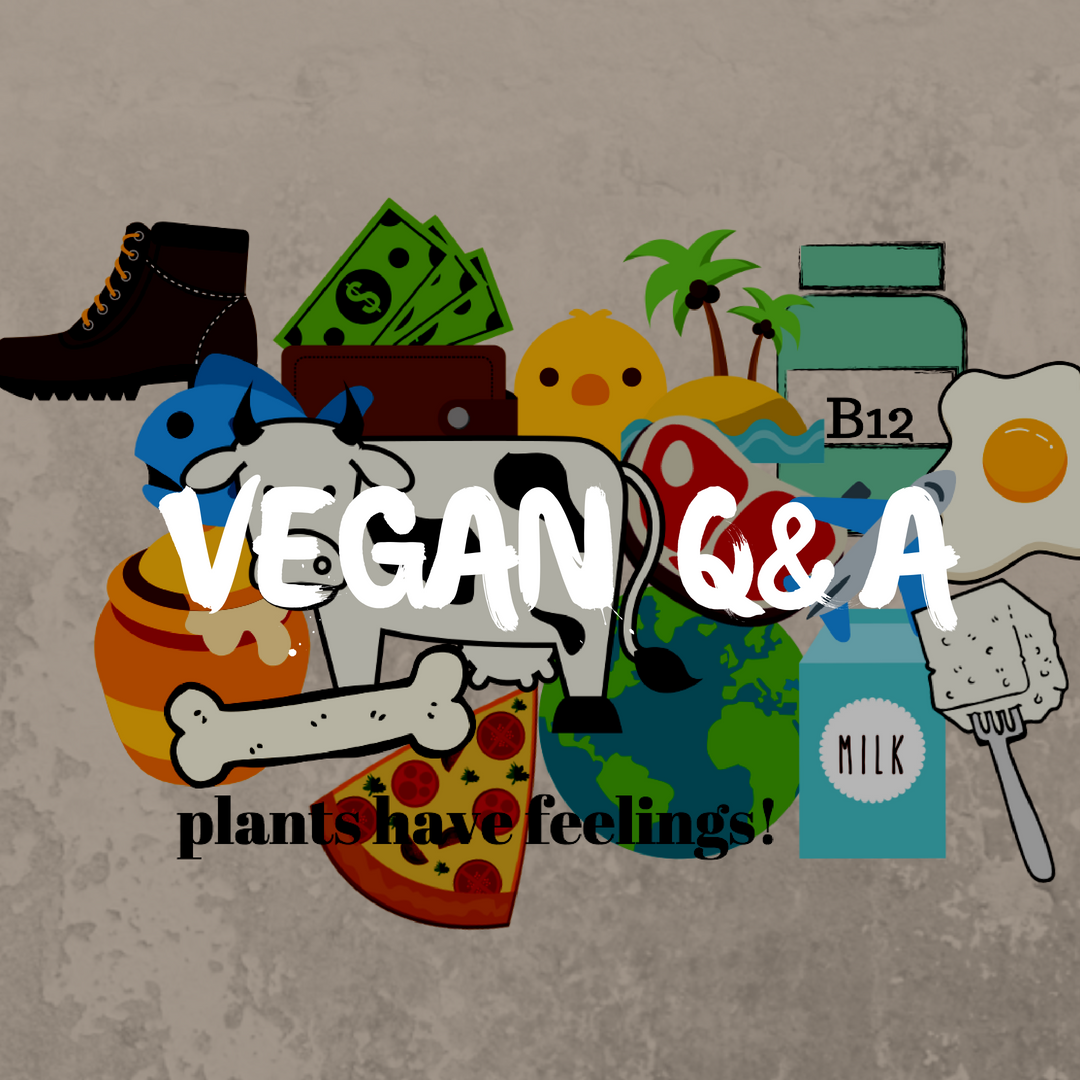 vegan q&A - amelietahiti.com