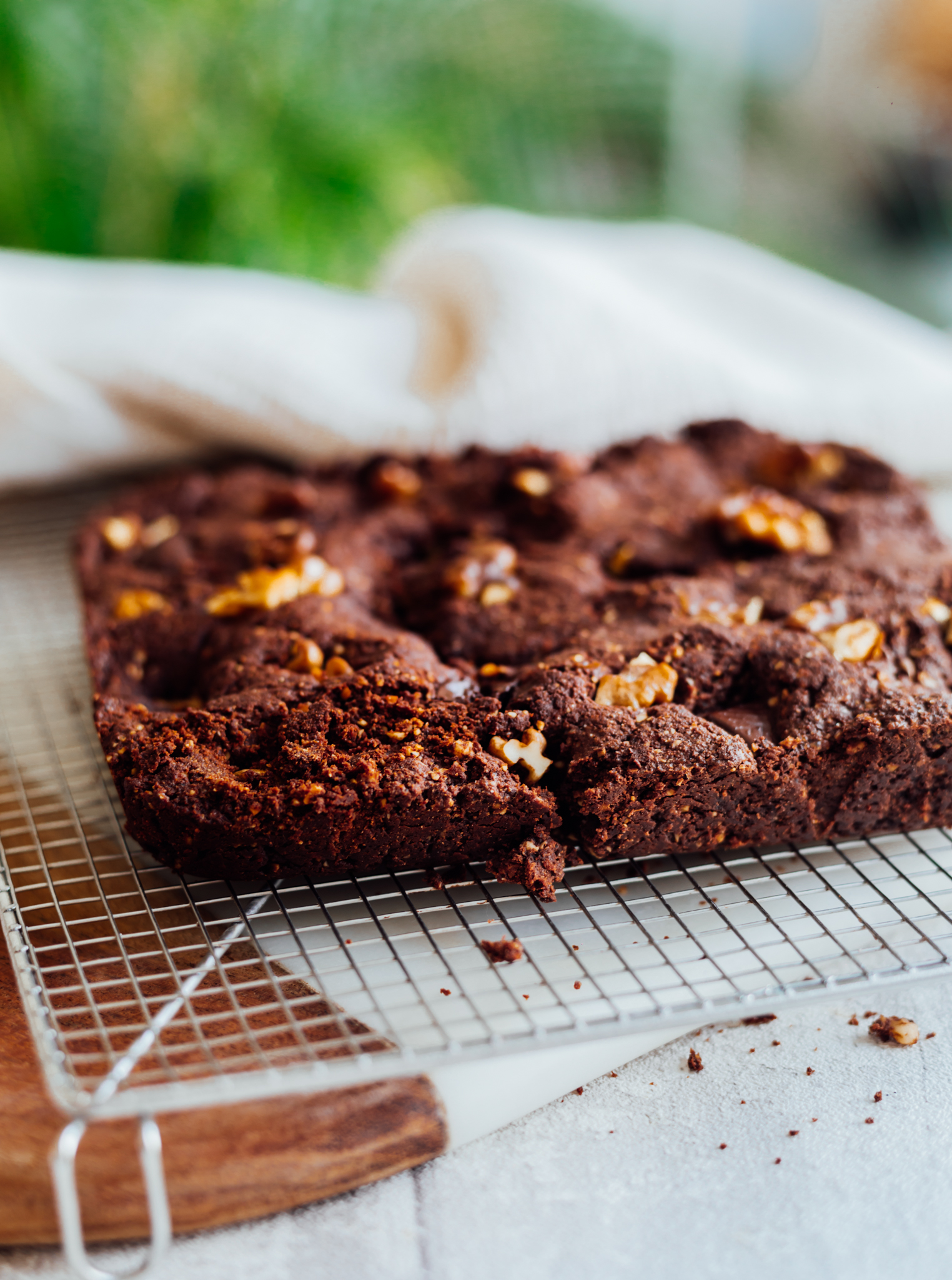 brownie-amelietahiti19-13.jpg