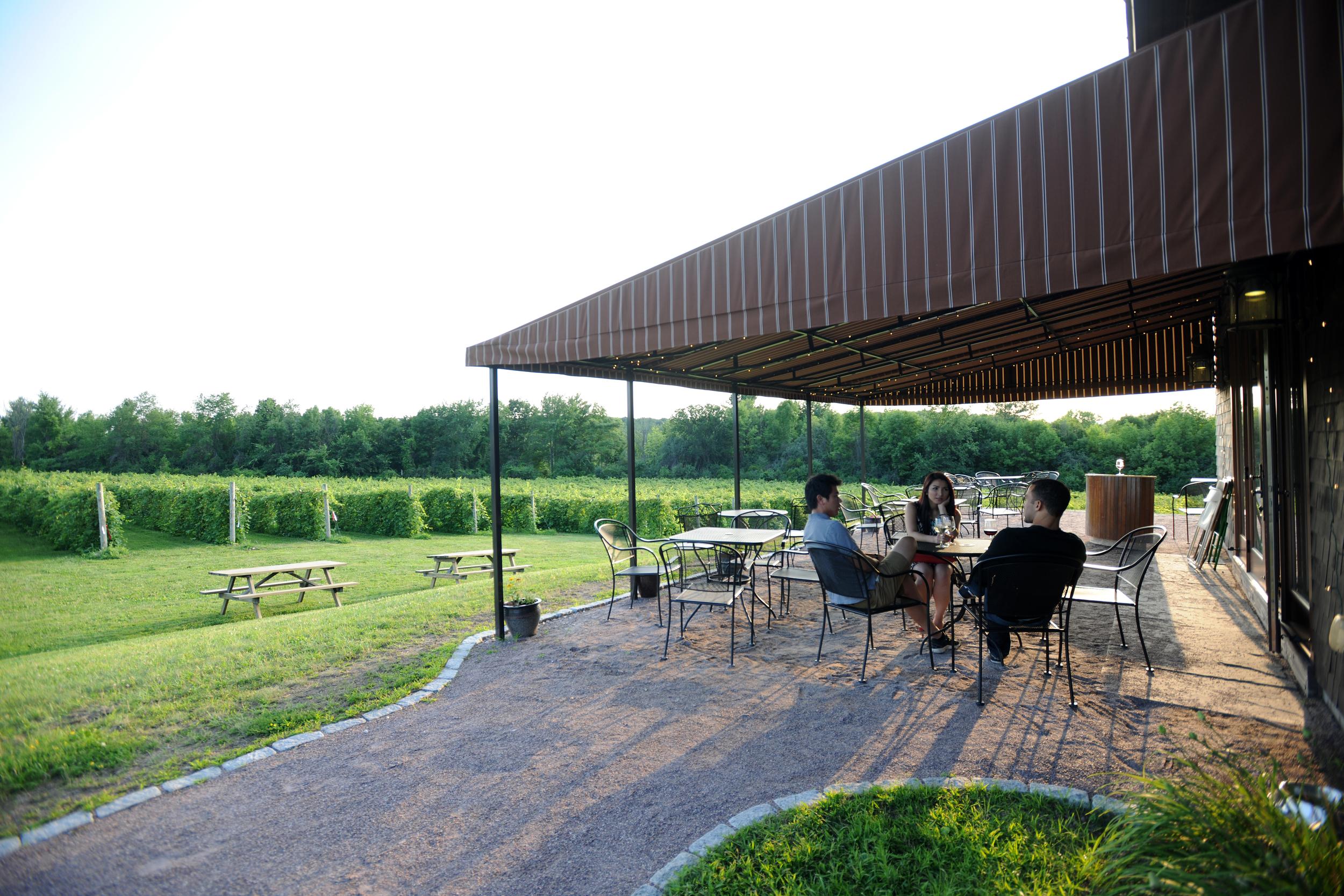 View of vineyard and people enjoying patio