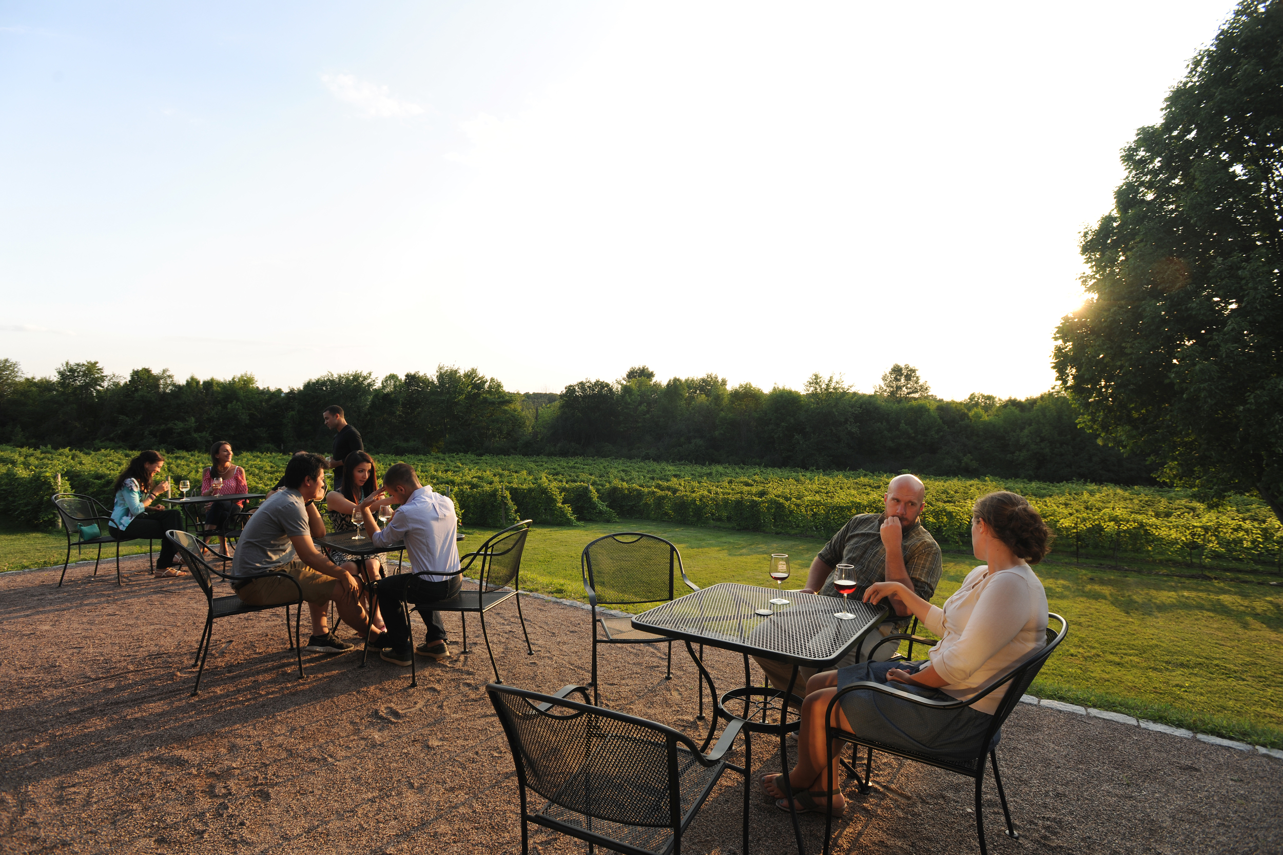 vineyard view and people on the patio