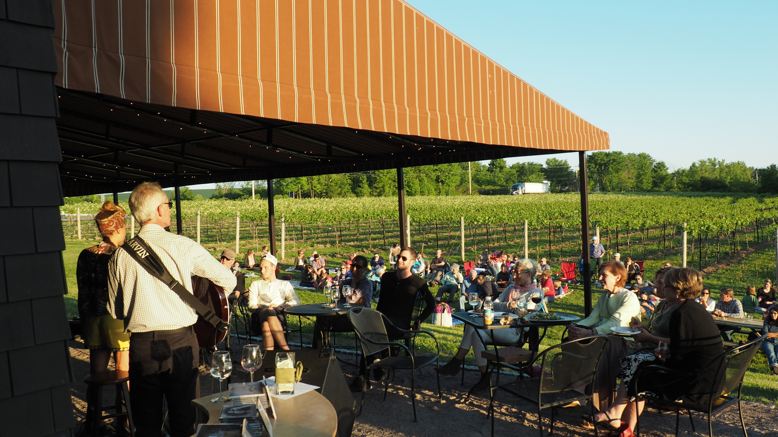 Sunny vineyard event outside