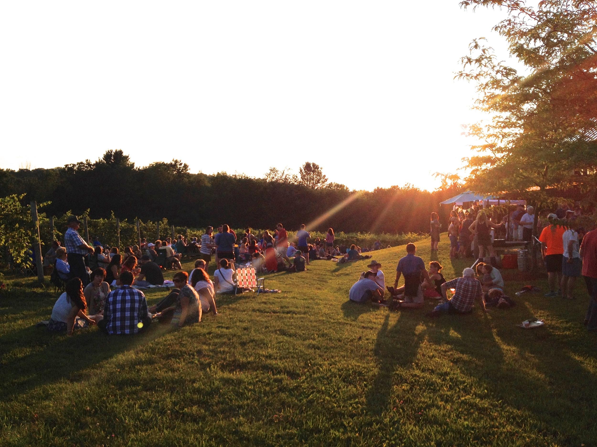 People enjoying a vineyard event outside