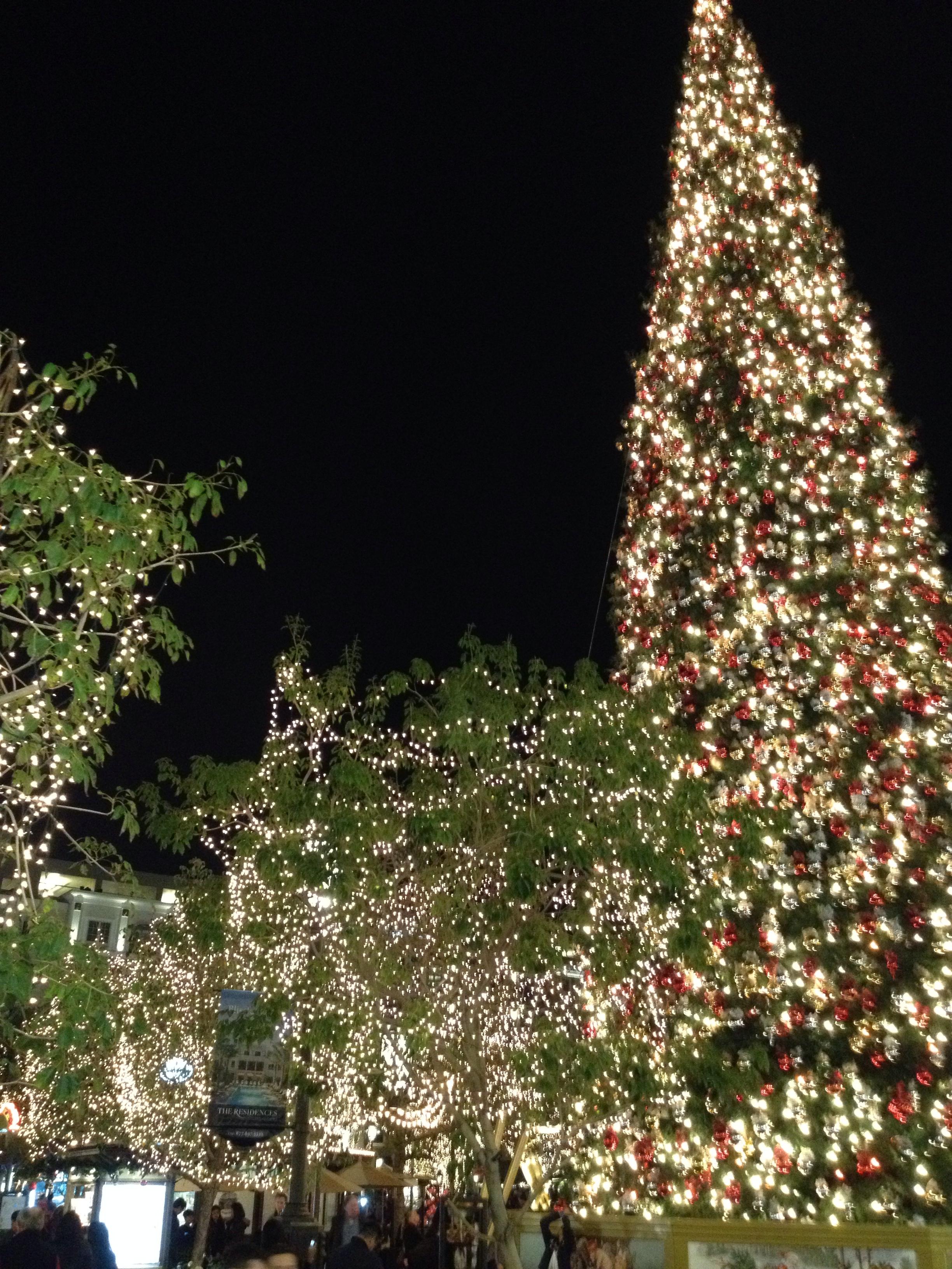 The Grove, Hollywood, CA