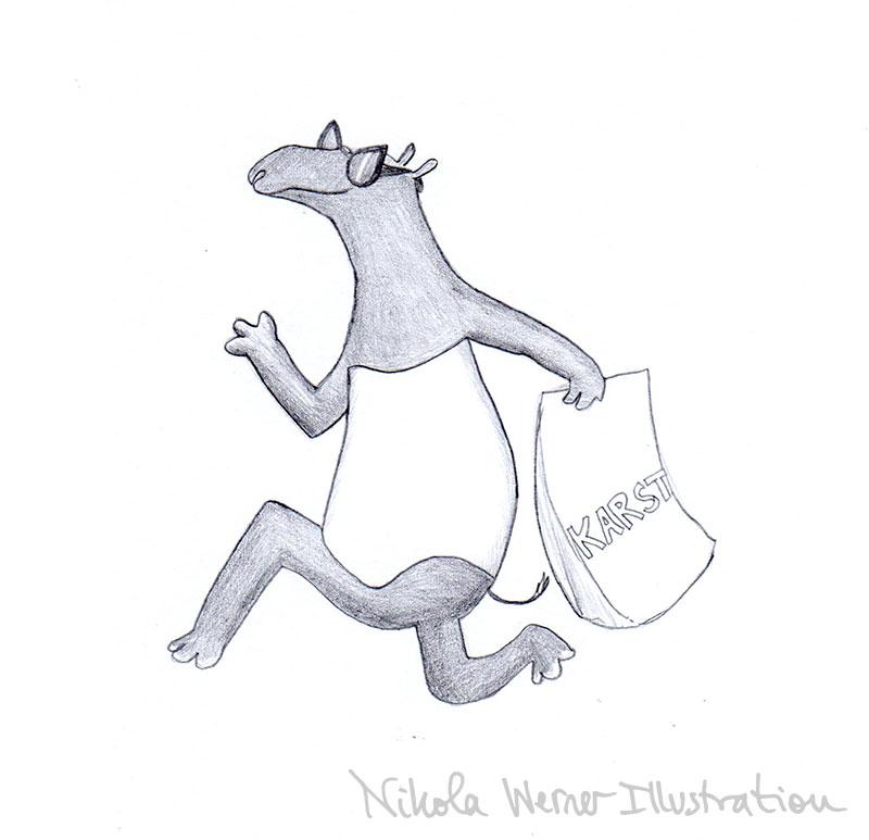 tapir-shopping-portfolio.jpg