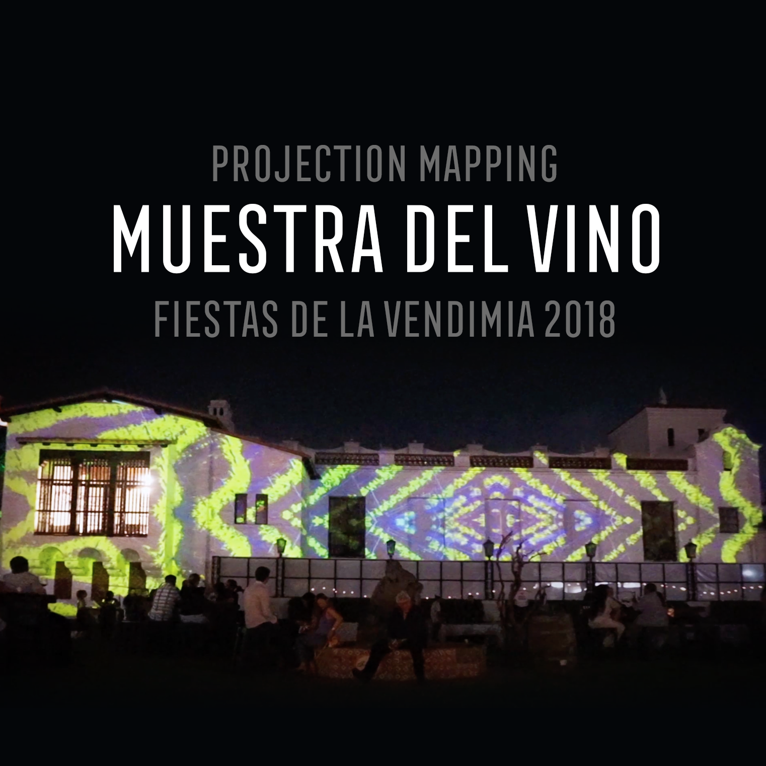 VIDEO MAPPING MUESTRA DEL VINO 2018