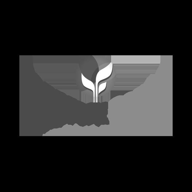 neutral7 design client nonprofit center