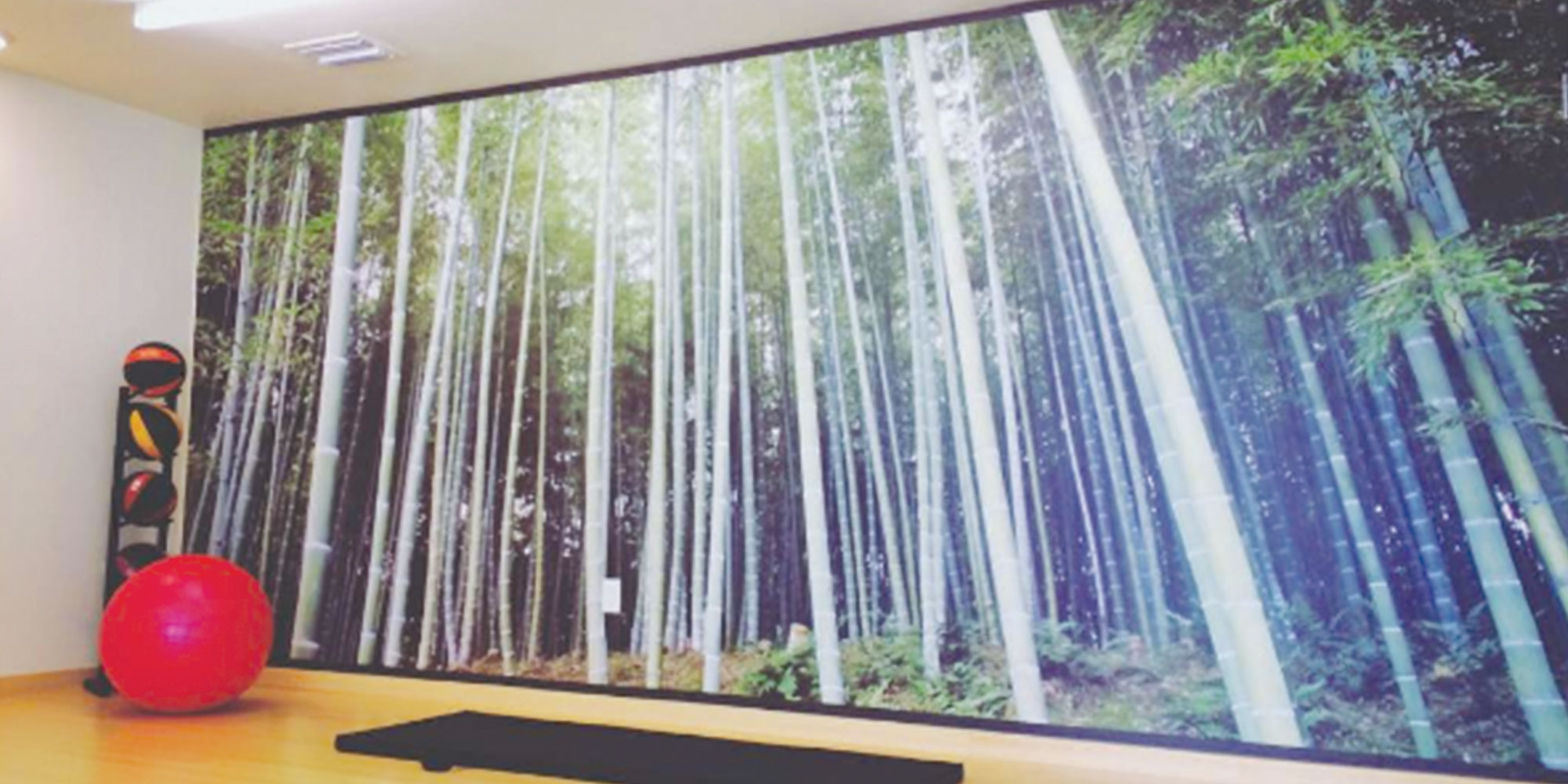 neutral7 wall graphics