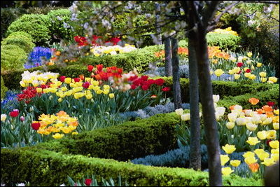 White House Garden in the Spring.