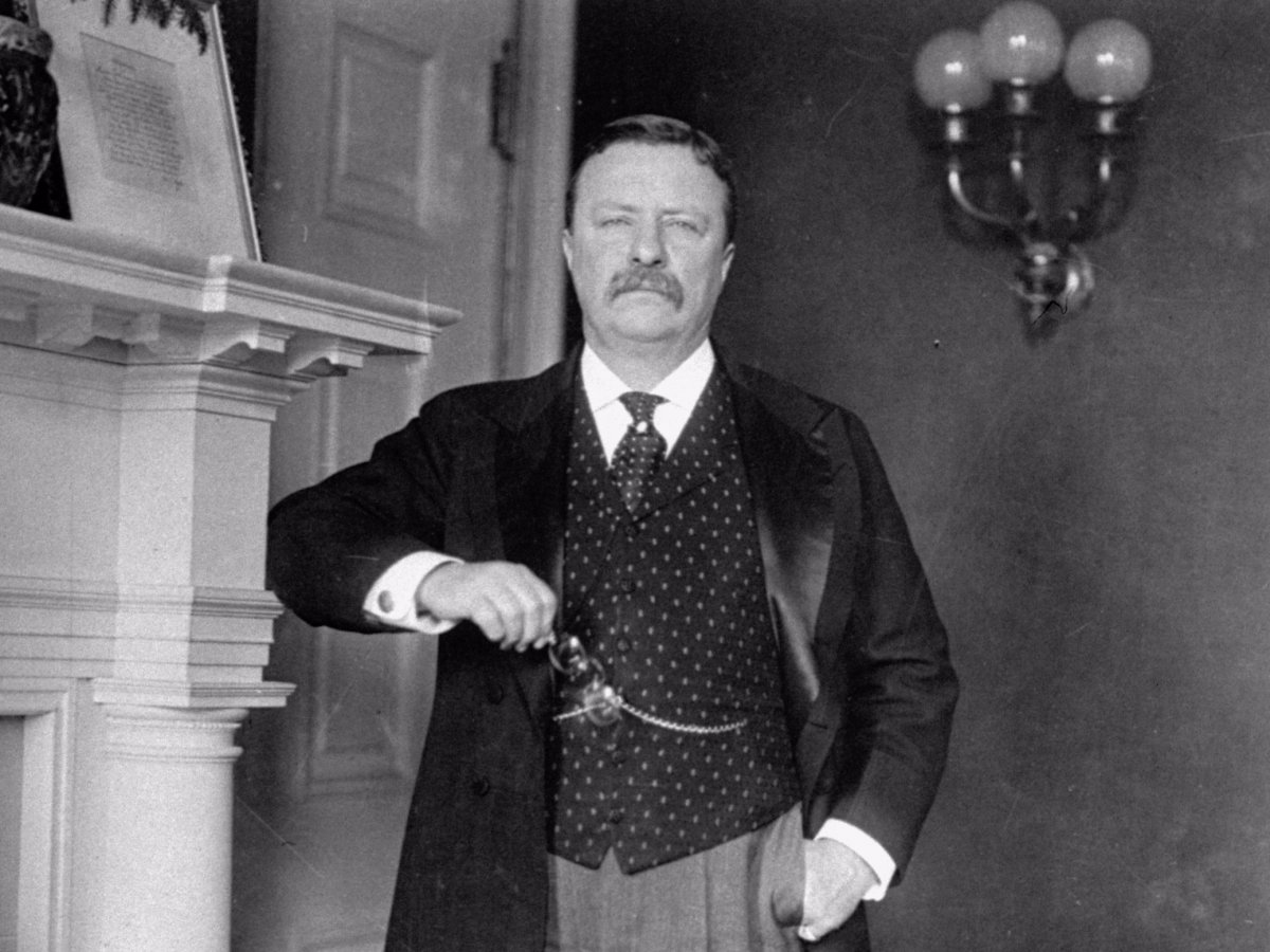 Theodore Roosevelt Collecrion, Houghton Library, Harvard University