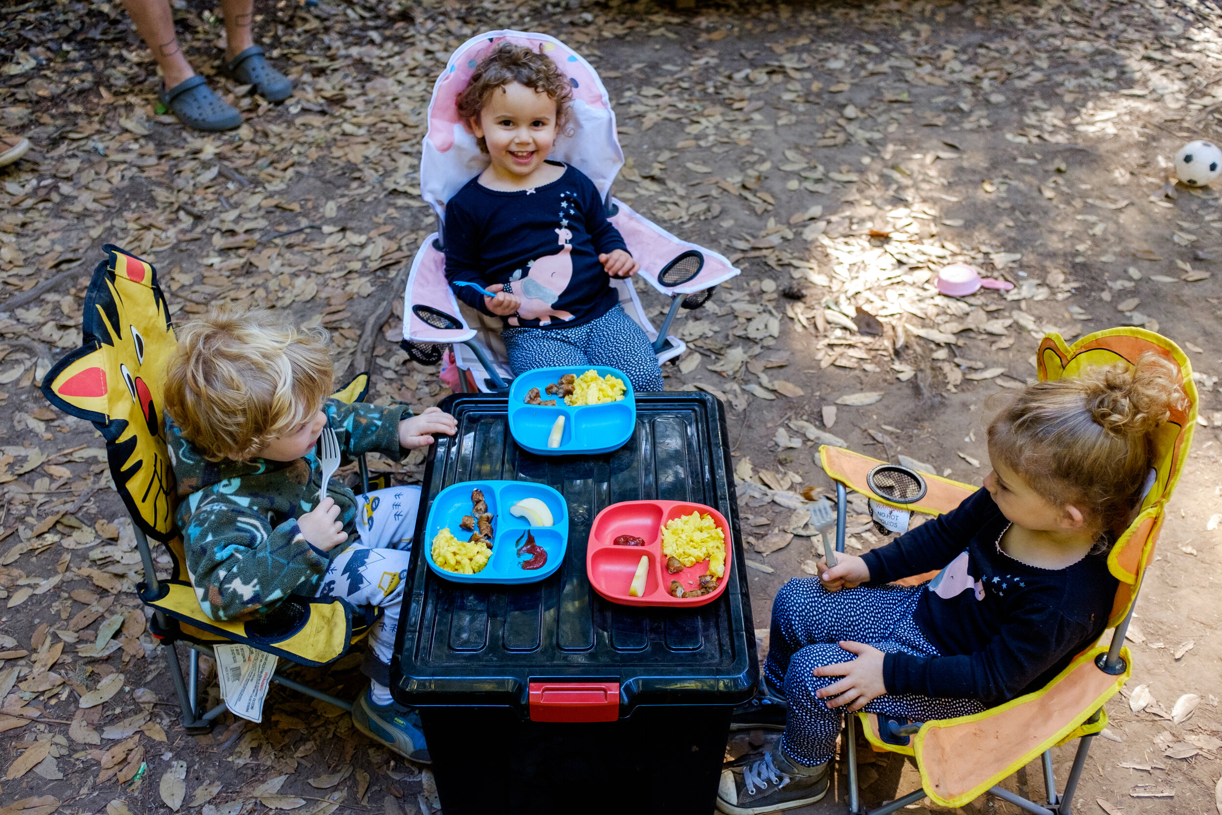 big basin 2019-September 01, 2019-30.jpg