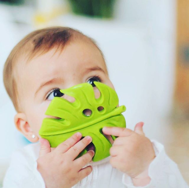 🌿 Monstera deliciosa is available @faire_wholesale for a softer teething process. 💛Designed through a great collaboration with pediatricians, physiotherapists and neurologists @wanatoy. 💦 Handmade by artisans with pure natural rubber, entirely biodegradable and sustainable.  #lancotoys #wanatoy #zoeborganic #teething #sustainablebabytoys #greenbabies #ecofriendly #greentoys #happybabies