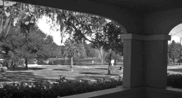 Overlooking the park from the Patio