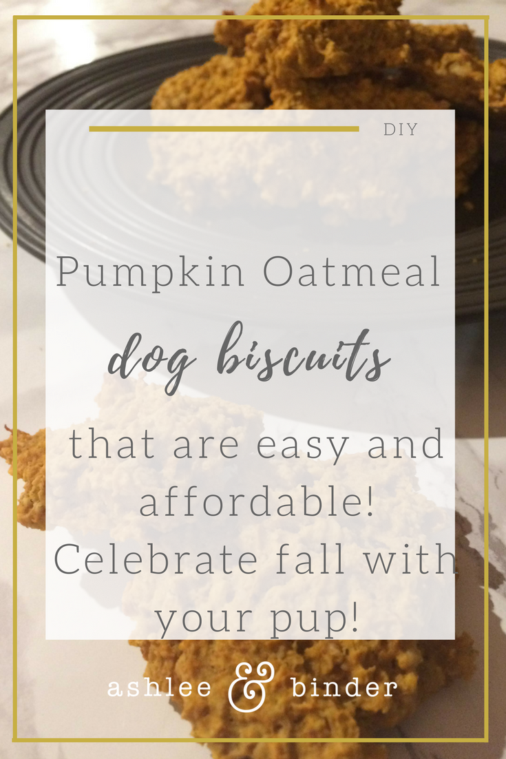 Pumpkin oatmeal dog biscuits that your dog will love and is affordable.png