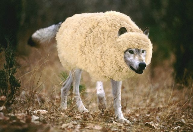 """Saying that """"reverse racism doesn't exist,"""" is a wolf in sheep's clothing"""